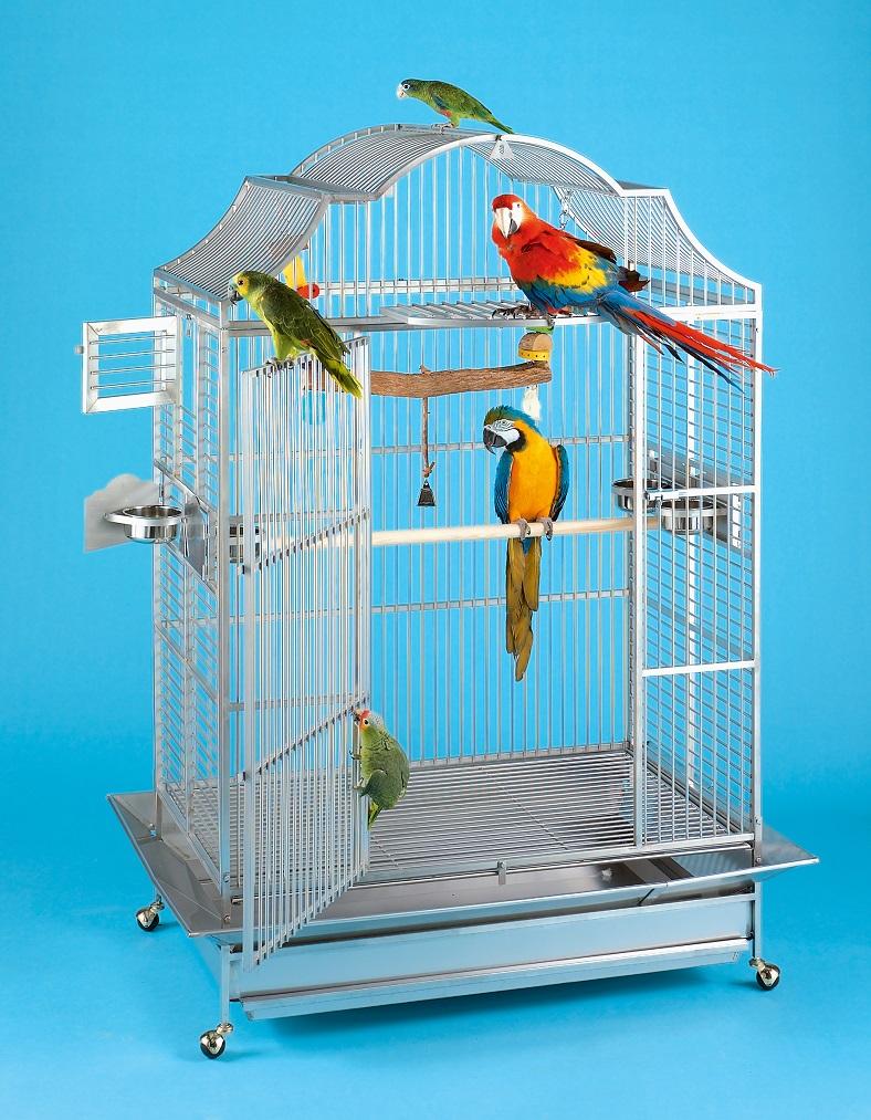 Kings papegojbur 406 rostfritt stål
