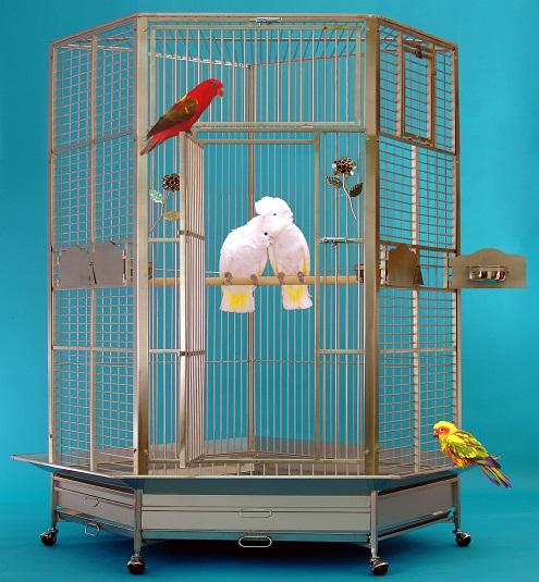 Kings papegojbur 509 rostfritt stål