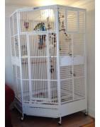 Papegojburar med större galleravstånd
